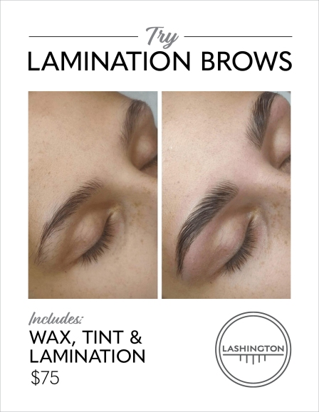 Lamination-brows_vert_outline